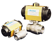 Meridian Actuated Ball Valve
