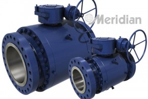 Trunnion Ball Valve by Meridian™