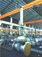 Neway Cast Steel Valves