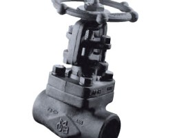 OMB API 602 Forged Steel Gate, Globe and Check Valves