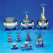 API 603 Cast Stainless Steel Gate, Globe and Check Valves